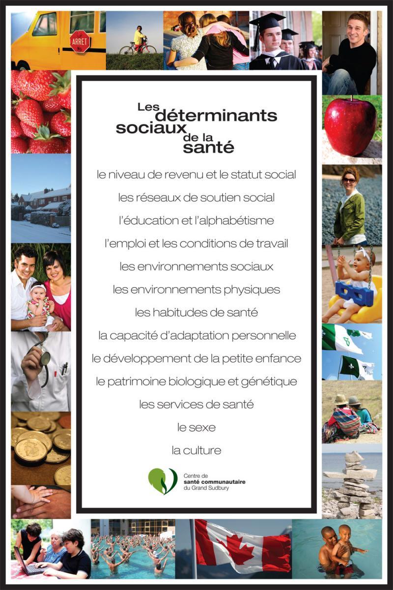 Affiche - Déterminants sociaux de la santé